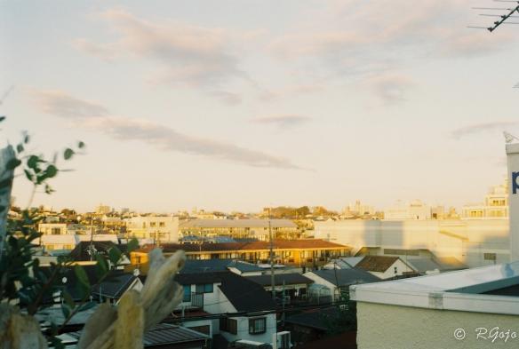 ローライ35で撮影した夕方の写真